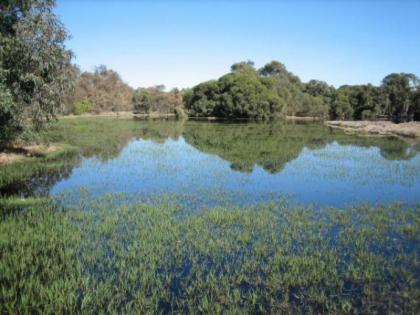 beeliar-wetlands